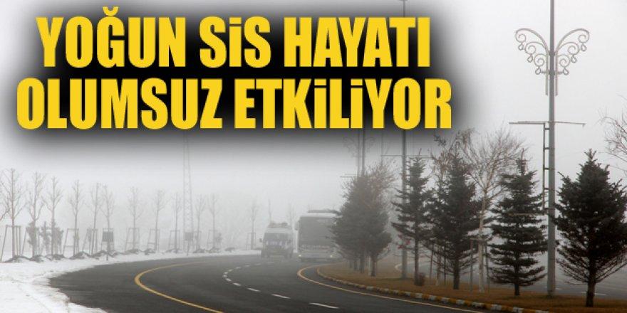 Erzurum ve Kars'ta kar yağışı ve sis etkisini sürdürüyor