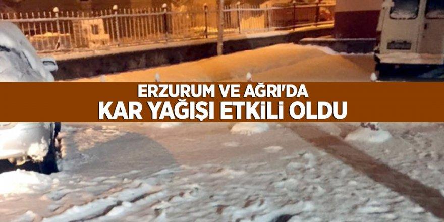 Erzurum ve Ağrı'da kar yağışı etkili oldu