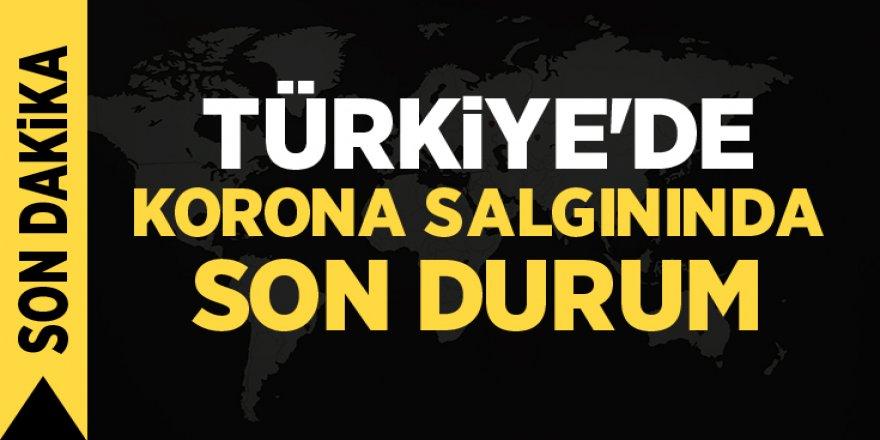 Bugün Türkiye'de 276 kişi hayatını kaybetti