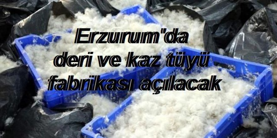 Erzurum'da deri ve kaz tüyü fabrikası açılacak