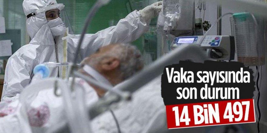 11 Mayıs Türkiye'de koronavirüs tablosu