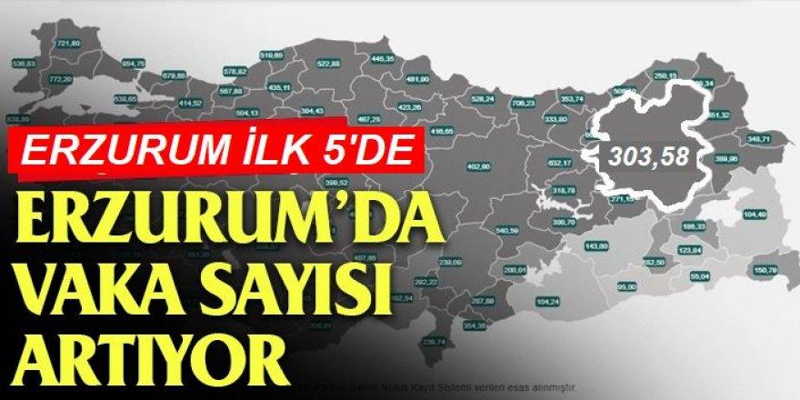 Erzurum'da korkutan vaka sayısı