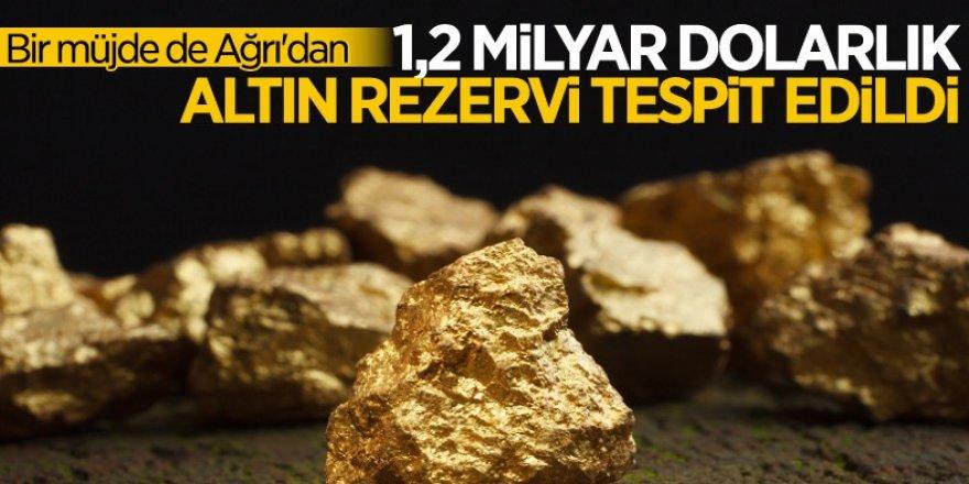 Bakan Varank duyurdu! Ağrı'da altın ve gümüş rezervi bulundu