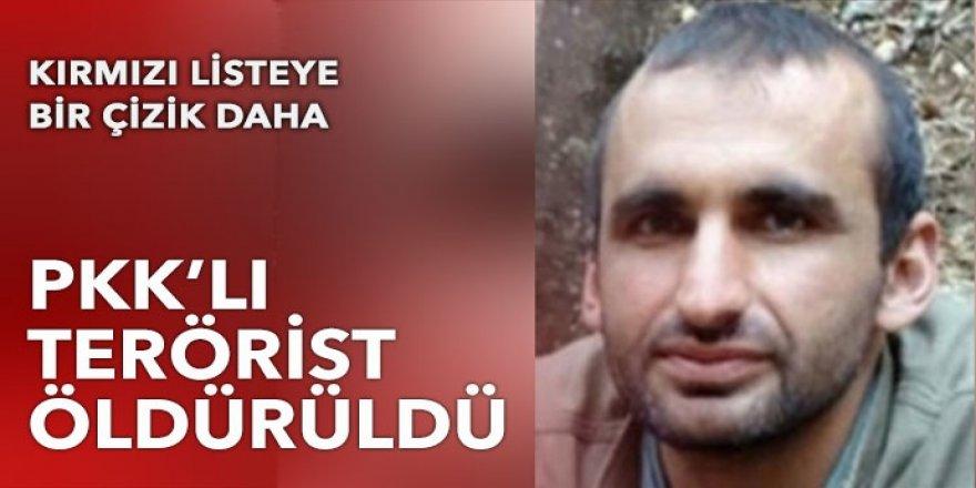 Kırmızı bültenle aranıyordu: PKK'lı Ulaş Doğan etkisiz hale getirildi