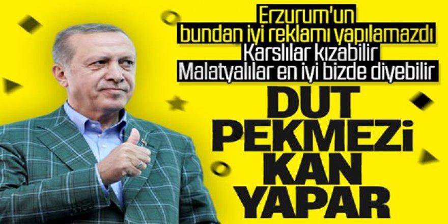 Cumhurbaşkanı Erdoğan'dan dut pekmezi tavsiyesi