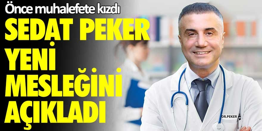 Önce muhalefete kızdı... Sedat Peker yeni mesleğini açıkladı