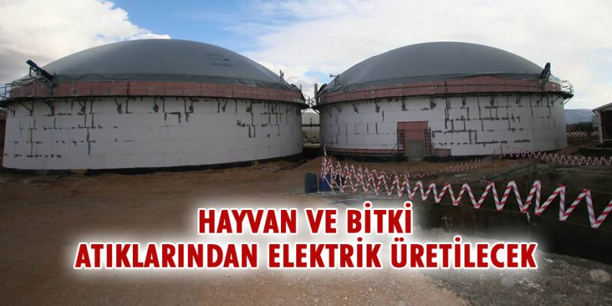 Erzurum'da hayvan ve bitki atıklarından elektrik üretecek