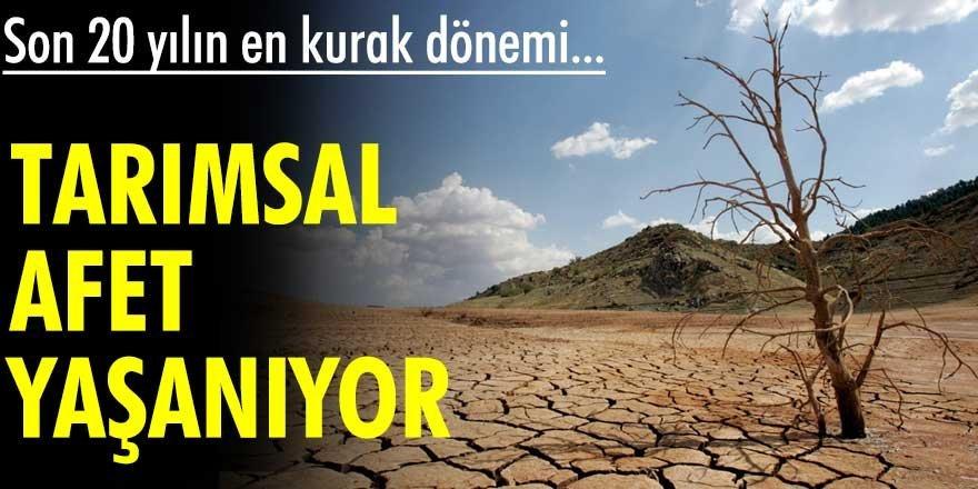 Tarımsal afet yaşanıyor