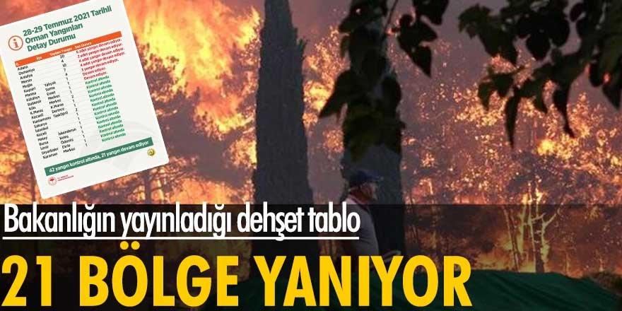Bakanlık yangınlara ilişkin son durumu paylaştı