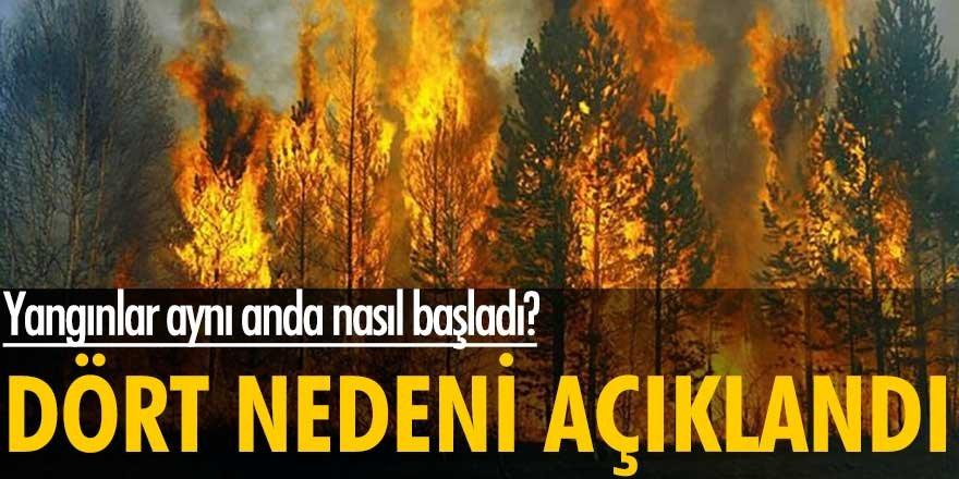 Yangınlar aynı anda nasıl başladı? Uzmanlardan dört neden