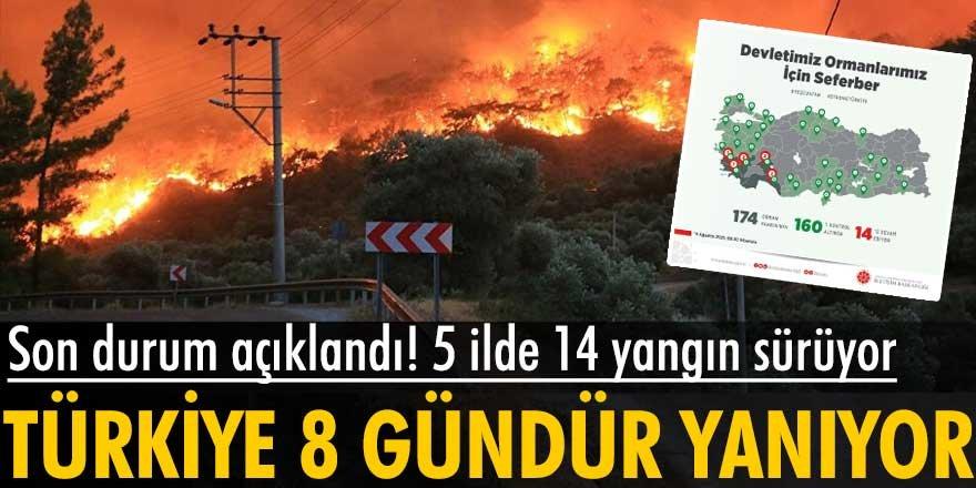Türkiye'de orman yangınlarının 8'inci gününde son durum