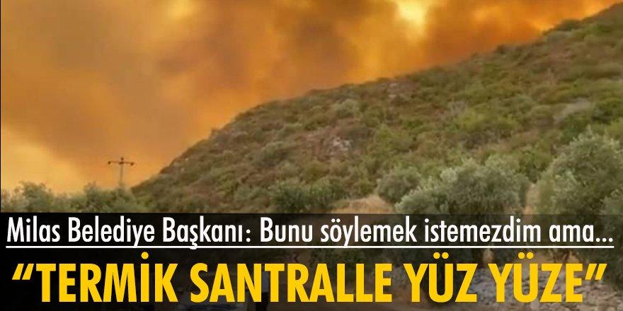 Muğla Milas yangınlara teslim: Belediye başkanı isyan etti