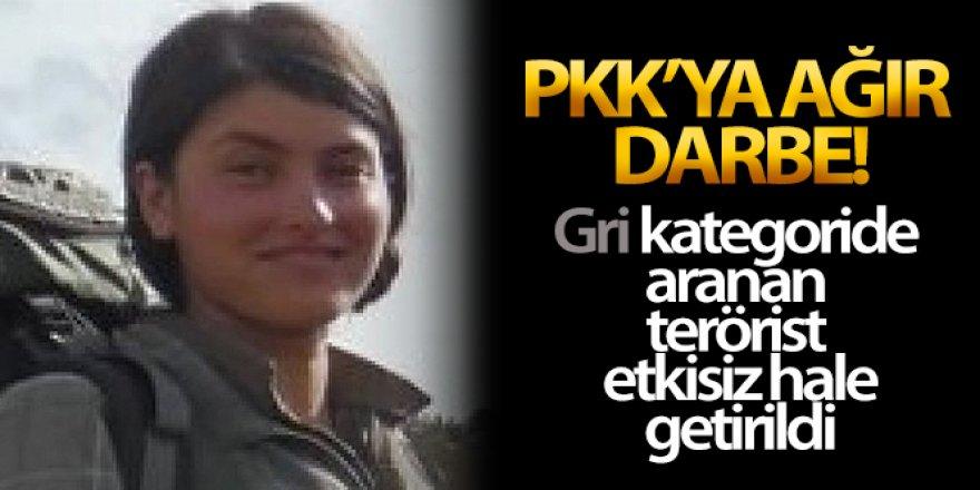 PKK'ya ağır darbe: 500 bin lira ödülle aranan terörist etkisiz hale getirildi