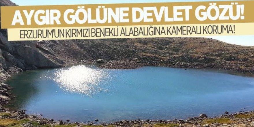 Aygır Gölüne kameralı koruma!
