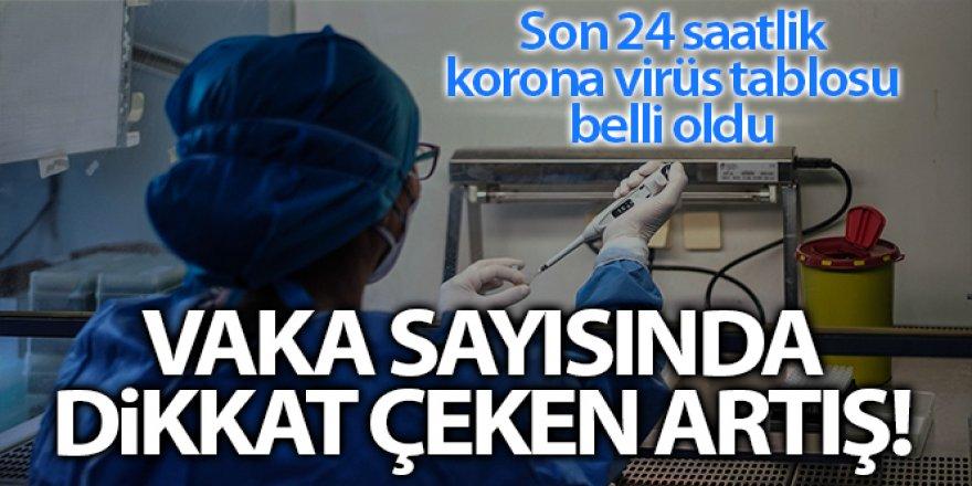 Son 24 saatte korona virüsten 213 kişi hayatını kaybetti