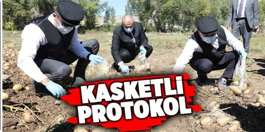 Kasket takıp yelek giyerek patates hasadı yaptılar