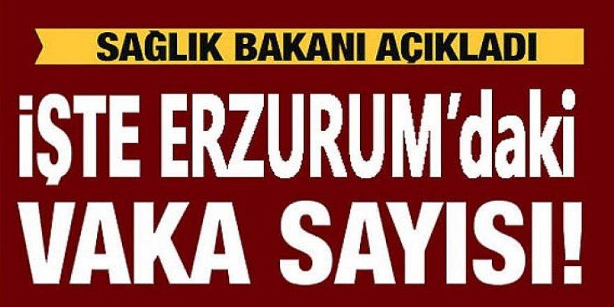 Erzurum vaka sayısında 28'inci sırada