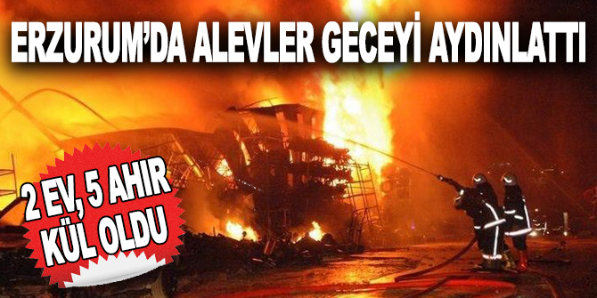 Erzurum'da alevler geceyi aydınlattı