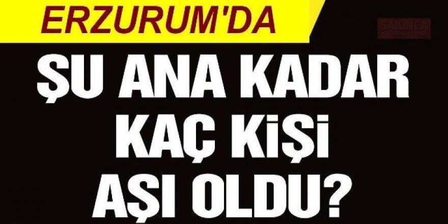 Erzurum'da ikinci doz aşı oranı açıklandı