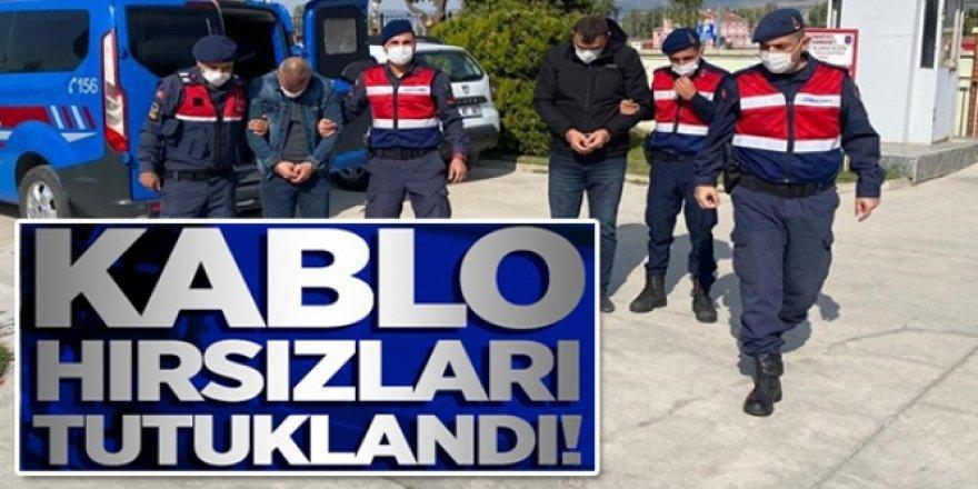 Erzurum'da Kablo hırsızları Jandarmadan kaçamadı