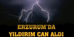 Erzurum'da yıldırım can aldı