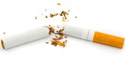 Dünyada yılda 6 milyon kişi sigaradan ölüyor