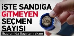 Erzurum'un yüzde 15'i oy kullanmadı!