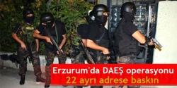 Erzurum'da DAEŞ operasyonu