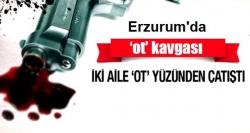 Erzurum'da ot kavgası: 1 yaralı