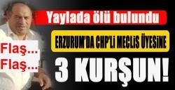 CHP Erzurum Meclis Üyesi öldürüldü!