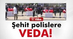 HDP'li vekilden PKK'yı kınama