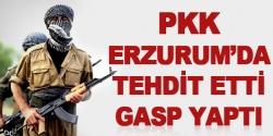 PKK'dan Tekmen'da gasp ve tehdit!