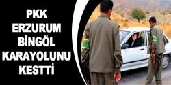 PKK Bingöl-Erzurum karayolunu kesti!