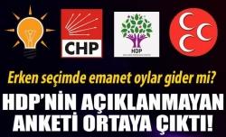 HDP'nin hiç açıklanmayan 2 anketi