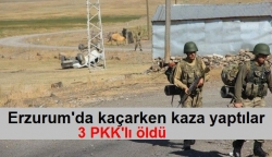 PKK'lılar kaçarken kaza yaptı: 3 ölü