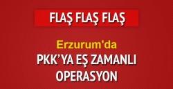 Erzurum'da 11 gözaltı!