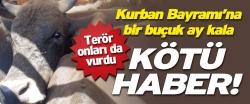 Kurbanlık sevkiyatlarında 'PKK' korkusu!