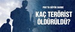 PKK'ya büyük darbe kaç terörist öldürüldü?