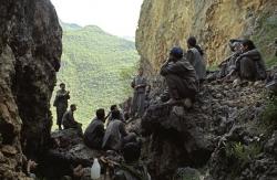 Ve harekete geçildi! PKK sokaktan çekilmezse...