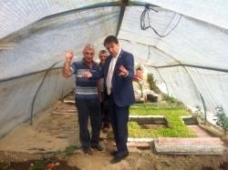 Ak parti milletvekili Aydemir'den çiftçiye müjde