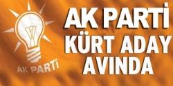 AK Parti Kürt aday avında