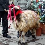 Erzurum'da evlilik gelenekleri korunuyor