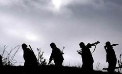 Mardin'de PKK'lılar eve saldırdı