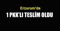 Erzurum'da 1 PKK'lı teslim oldu