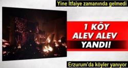Güzelova Köyü alev alev yandı