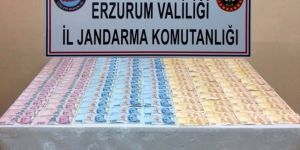 Erzurum'da Jandarmadan Sahte Para ve Kaçak Göçmen Operasyonu