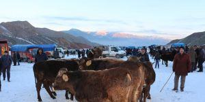 Kar üstünde hayvan pazarı