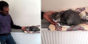 Donmak Üzere Olan Yavru Kediyi Polis Memuru Kurtardı