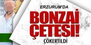 Erzurum'da 17 kişilik 'bonzai' çetesi çökertildi