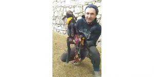 Horasan'da Altı Ayaklı, İki Çeneli, İki Dilli Kuzu Dünyaya Geldi